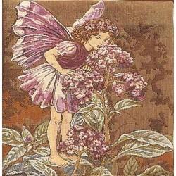 Heliotrope Fairy