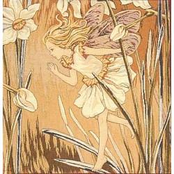 Narcissus Fairy