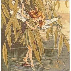 Willow Fairy