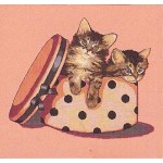 Kittens in hatbox